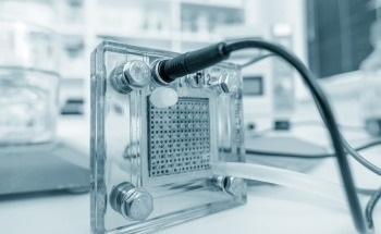 Fuel Cell Fabrication Applications for Organic Binders