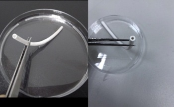 Producing Electrospun Artificial Blood Vessels