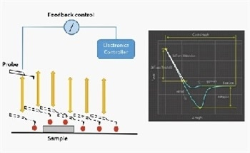 Quantification of Elastic Modulus in Materials Using AFM
