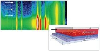 Probing Organic Solar Cells In Situ