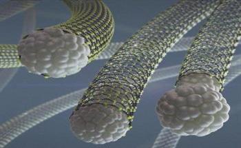 Examining Dynamic Behaviors in Carbon Nanotube Growth