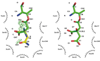 Macromolecular Crystallography for Determining 3D Structures