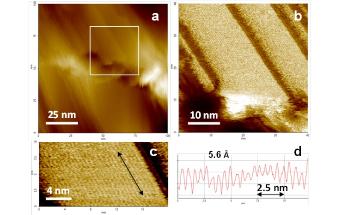 High Resolution AFM Imaging of Single PTFE Molecules on Teflon Surface
