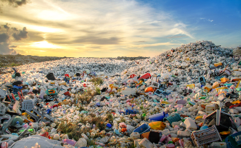 Nanoparticles Imitate Nature to Tackle Plastic Pollutants