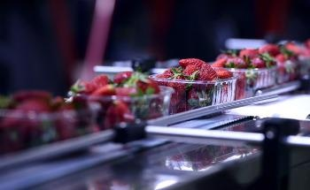 How is Nanotechnology Used in the Food Industry?