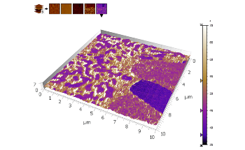 An SPIP™ User's Perspective on the Transition to MountainsSPIP® for AFM Analysis