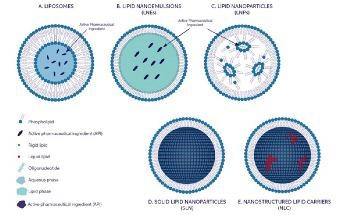 Lipid-Based Nanoparticles: Manufacturing and inline size Characterization