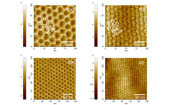 Superlattice Electromechanical Characterization with Piezo-Response Force Microscopy