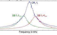 Investigating Domain Structure Origin in Hybrid Perovskite Piezoresponses