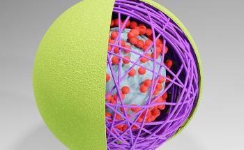 What are Nanocapsules?