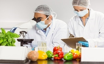 Nanotechnology To Play Important and Prominent Role In Food Safety