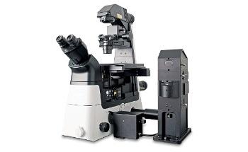 Inverted Raman Imaging Microscope: WITec alpha300 Ri