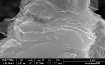 SE1233:用于腐蚀防护和电气的高导电石墨烯