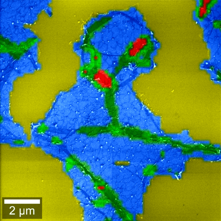 Correlative Raman-SEM (RISE) image of a graphene flake. The colors indicate the graphene layers and wrinkles.