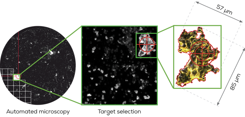 Identify Particles with the Hound Particle Characterization Platform