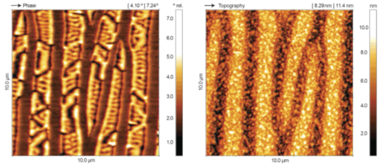 Magnetic force microscopy on MnAS thin film sample. Domains with different magnetic orientation are visualized in the phase image. Image acquired with DME DS 95 Compact granite SPM system.