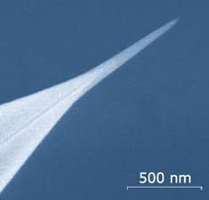 Universal AFM Probes from Nanotools