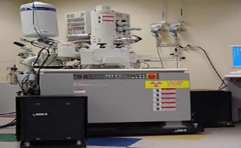 FP-1 Vibration Isolation Floor Platform for SEM