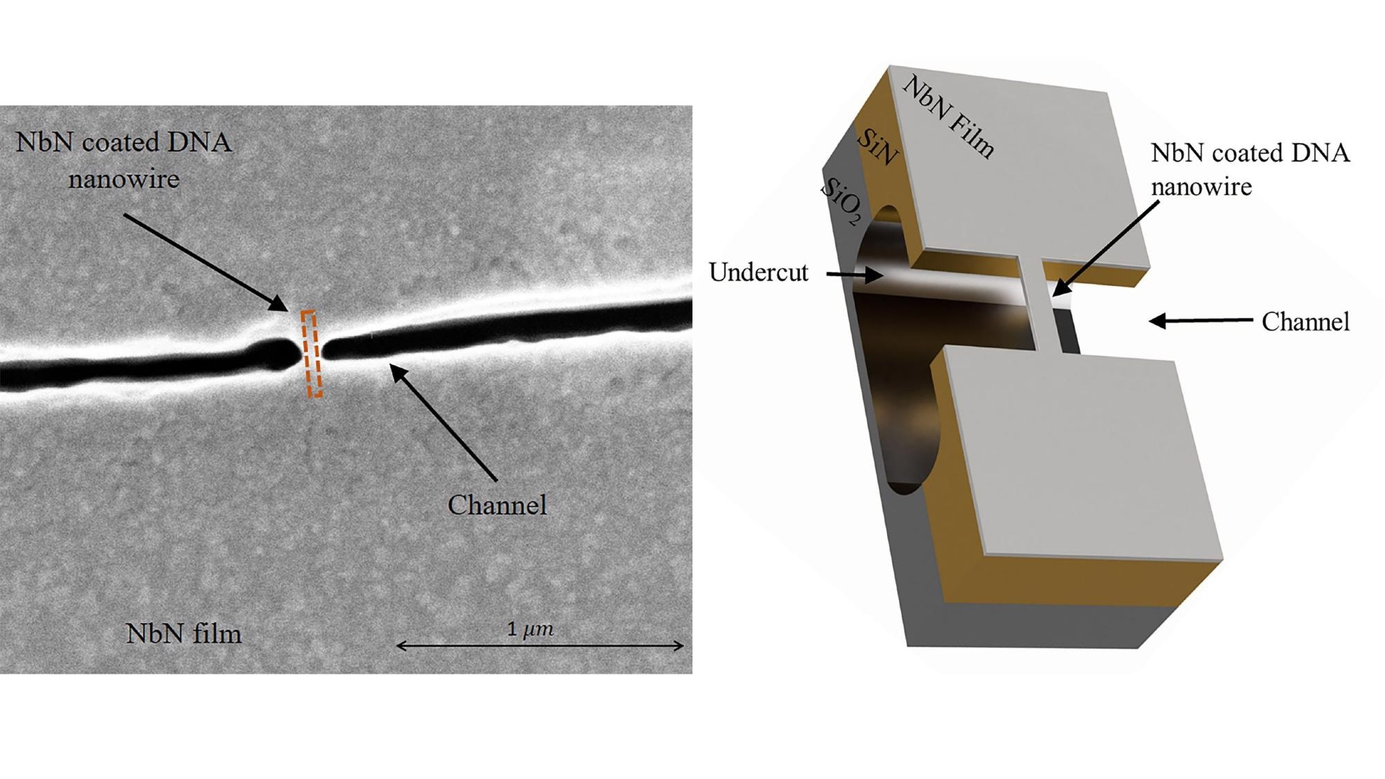 Exploiting DNA Origami to Build Superconducting Nanoarchitectures