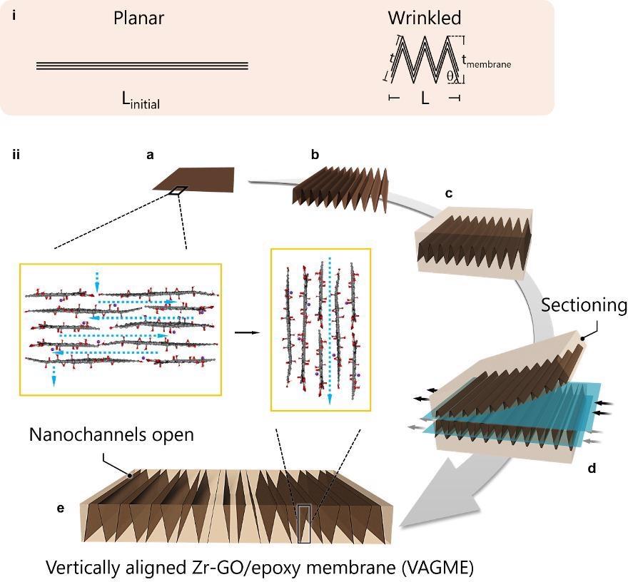 New Technique to Leverage Graphene Nanochannels for Water Filtration