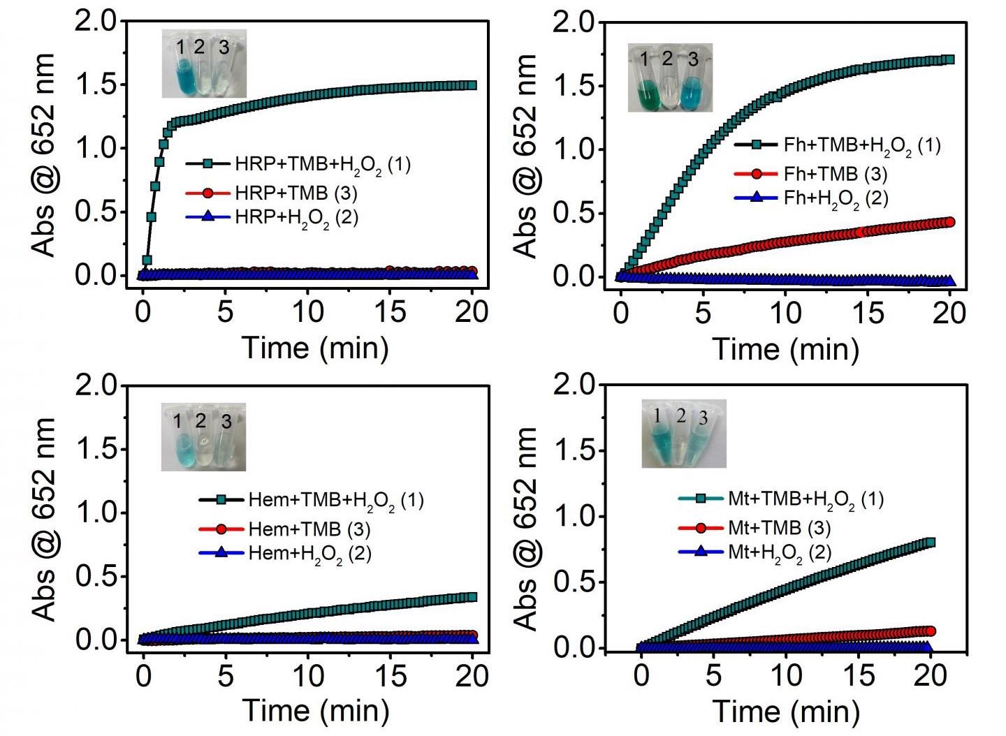 Mineral Nanozymes Could be New Enzyme Mimetics in Earth Systems.
