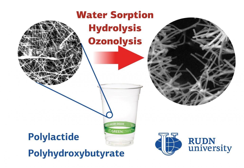Study Reveals Effect of Environmental Factors on Nanostructure of Bioplastics