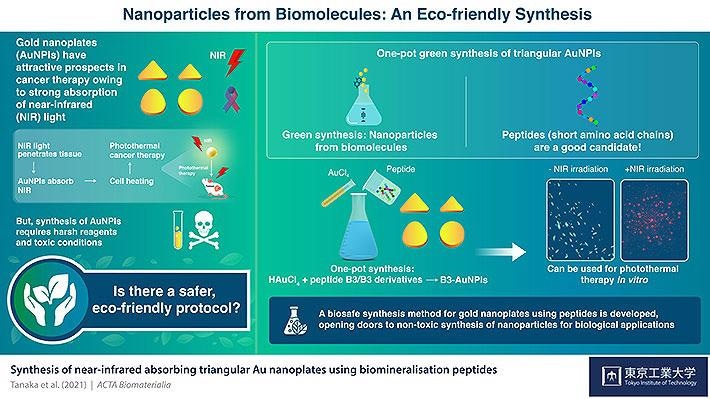Eco-Friendly Gold Nanoparticles for Cancer Treatment.