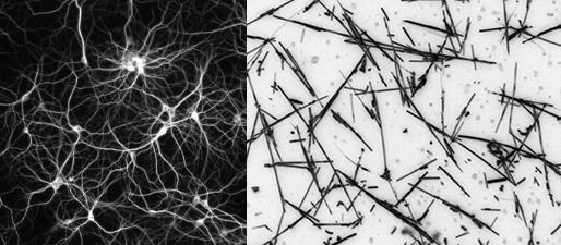 人工纳米线网络可以像大脑一样做出反应