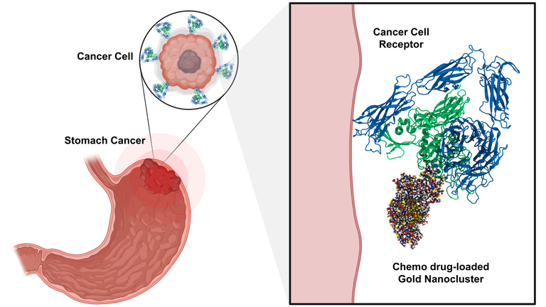 graphic, targeting tumor specific receptors with nanotechnology