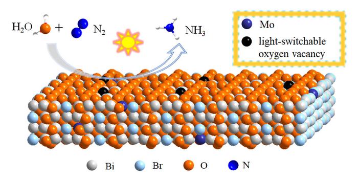 Introducing Oxygen Vacancies into Mo-Doped Bi5O7Br Nanosheets Improves N2 fixation.