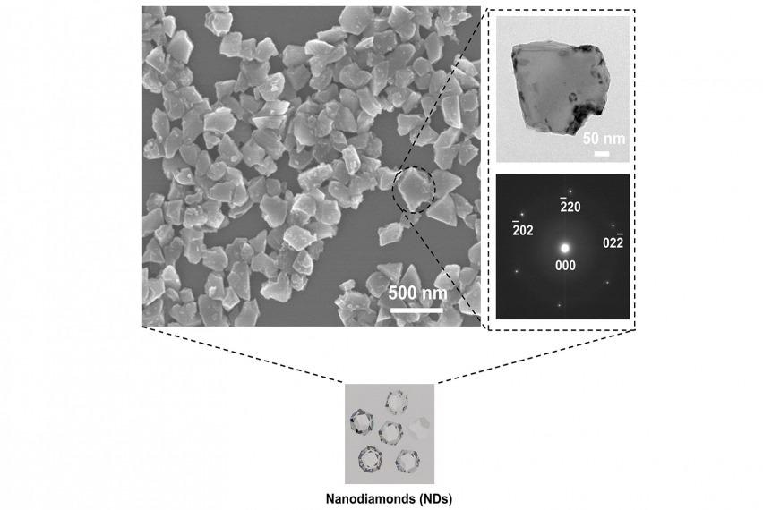 Study Shows Nanodiamonds are an Effective Agent in Treating Dental Diseases