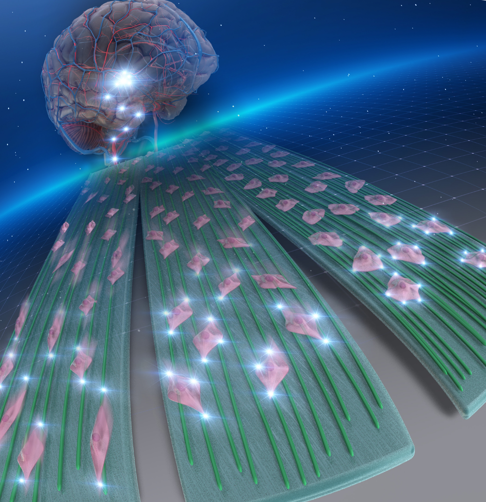 High-Density Nanofibers Set the Stage for Novel Therapeutic Solutions for Brain Cancer