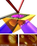 PTIR Technique Using AFM Extracts Chemical Information with Nanometer-Scale Spatial Resolution