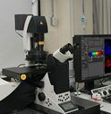 National University Hospital in Seoul Acquires Leica TCS SP8 STED Super-Resolution Microscope