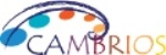 Cambrios to Highlight Silver Nanowire-Based Conductive Coating Material at Display Week 2013