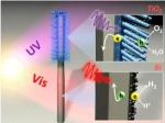 Researchers Develop Fully Integrated Nanosystem for Artificial Photosynthesis