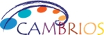 Gartner's Cool Vendor Recognition Validates Cambrios' Silver Nanowire Technology
