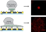 Gold Nanodot Obstacle Arrays Used in Study of Malignant Activity of Cancer Cells