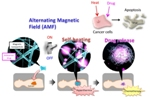 Novel Nanofiber Mesh Simultaneously Realizes Thermotherapy and Chemotherapy of Tumors