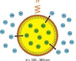 Perfluorocarbon Nanoemulsion Gas Bubbles Hold Promise for NMR and MRI