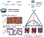 Researchers Devise Synthesis Method for Hierarchical Nano-Length Scale Porous Polymer Films