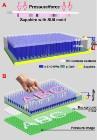 Nanosensor Converts Fingerprints into Light Signals for Optical Processing