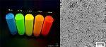 Quantum Materials Ships Samples of Tetrapod Quantum Dots to Major Asian Electronics Manufacturer