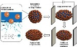 Interfacial Jamming of Nanoparticles Stabilizes Liquid Drops in Nonequilibrium Shapes