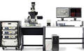 Leica SR GSD 3D Super-Resolution Microscope Achieves Third Place in The Scientist Magazine's Top 10 Innovations