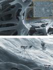 Multi-Walled Carbon-Nanotube-Based Coating Greatly Reduces Flammability of Foam
