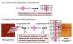 NIMS Develops Method for Controlling Molecular Self-Organization