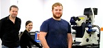 JPK Reports on The use of Their AFM System the NanoWizard® at Swansea University