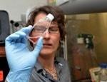 Marshall University Professor Earns NSF CAREER Award to Study Impact of Silver Nanoparticle Exposure