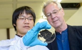 Innovative Superconducting Thin Nanomaterial Gets Magnets Levitating